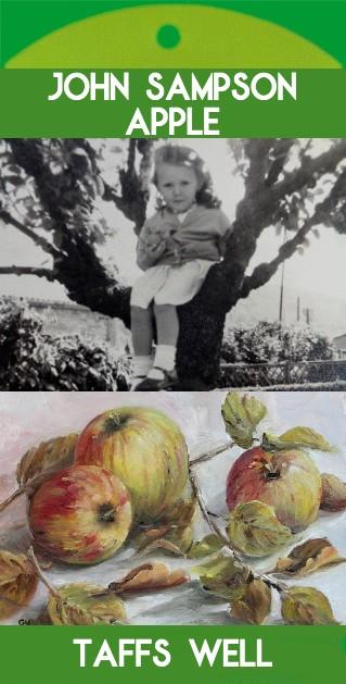John Sampson Apple (Taffs Well, Cardiff)