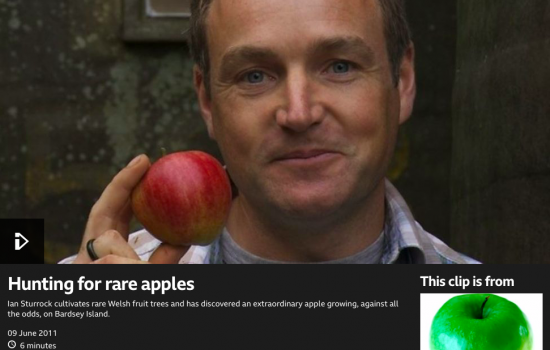 Hunting for Rare Apples Screen Shot